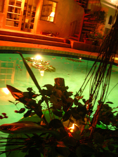 Pool1_3