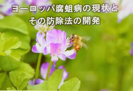 Img_0571_800x533_2