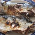 鯖の素焼き