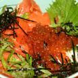 鮭 親子寿司