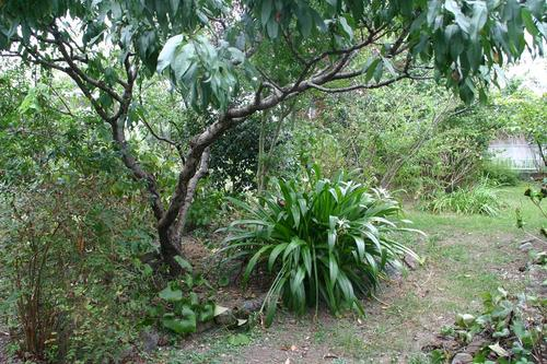 ナベショーの里山ガーデン