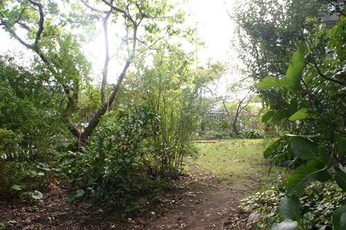 ナベショーの庭