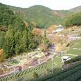有東木 山葵栽培発祥の地