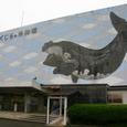 クジラの町 太地 鯨博物館