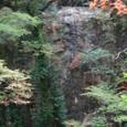 瀬戸川の不動峡 不動明王の石像