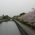 姫路駅南 外堀川運河公園