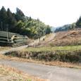 花倉城への道