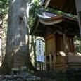 青羽根集落 大井神社