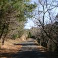 藤枝市民の森へ