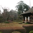 川越喜多院 庭園