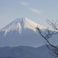 八紘嶺からの冨士
