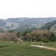 旧東海道 小夜の中山から牧の原台地